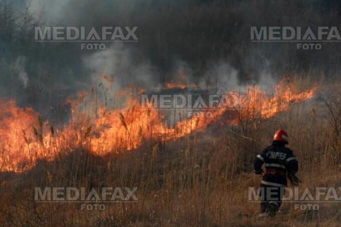 Pericol de explozie la Dambovita: mai multe hectare de vegetatie au luat foc