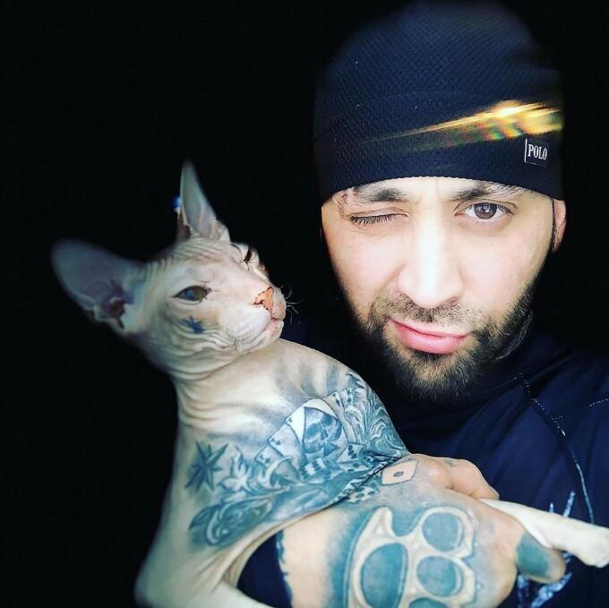 O pisică plină de tatuaje a fugit din mașina stăpânului său - 6