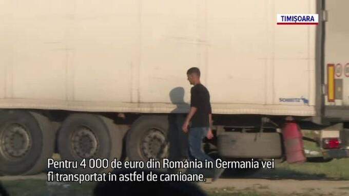 migranti de contrabanda 2