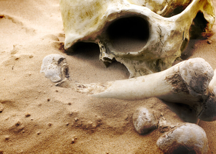 Arheologii au ramas fara cuvinte dupa aceasta descoperire veche de 10.000 de ani! A fost prima data cand s-a intamplat asta