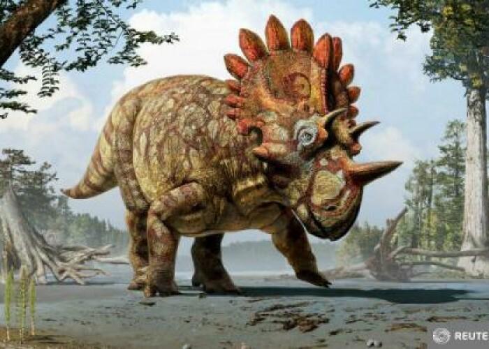 A fost descoperita o noua specie de dinozaur cu coarne: Cu cine seamana de fapt