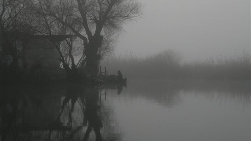 Peisaj Delta