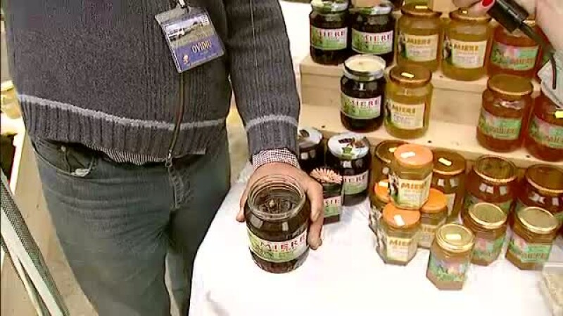 GHIDUL apicultorilor: cum deosebesti mierea adevarata de produsele contrafacute de pe piata. VIDEO