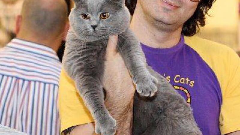 Expozitie de pisici la Romexpo. 250 de exemplare concureaza pentru titlul de cea mai frumoasa felina