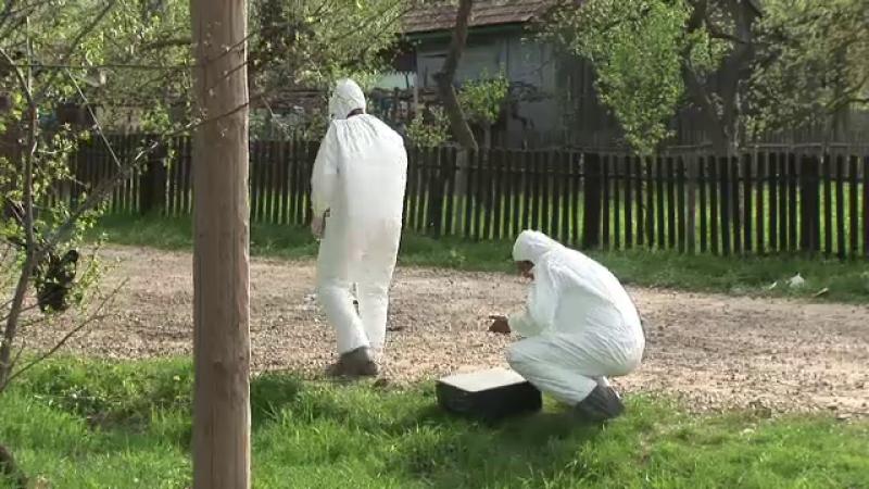 criminalisti Botosani