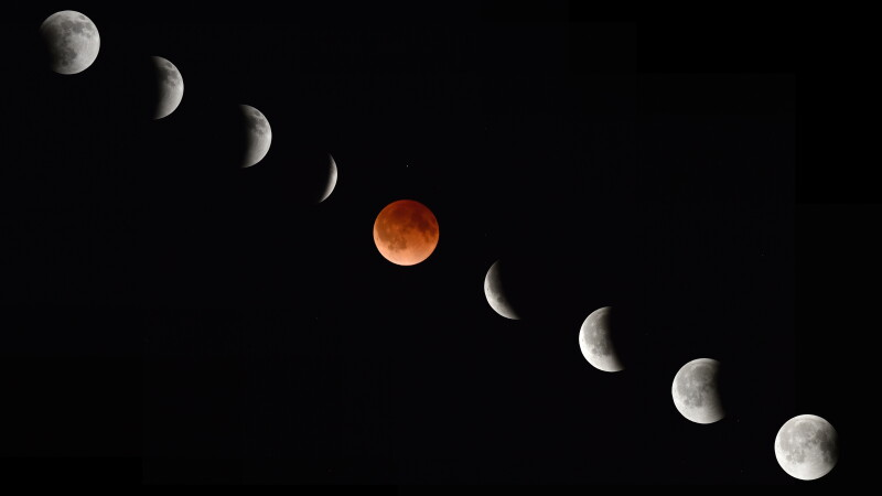 Luna insangerata
