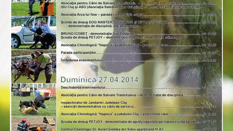 Ziua Internationala a Cainilor de Salvare se sarbatoreste la Cluj prin Hiperparada animalelor