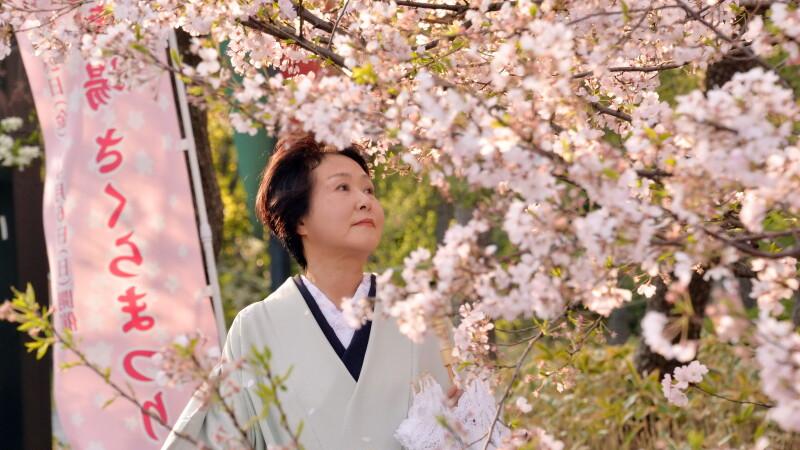 Japonia vrea sa devina tara cu cel mai mare turism din lume. Cati bani se castiga din \