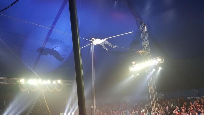 artist, circ, cazatura, rusia