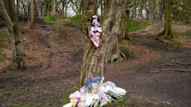 Starea deplorabilă în care a fost găsit trupul unui bebeluș abandonat în pădure