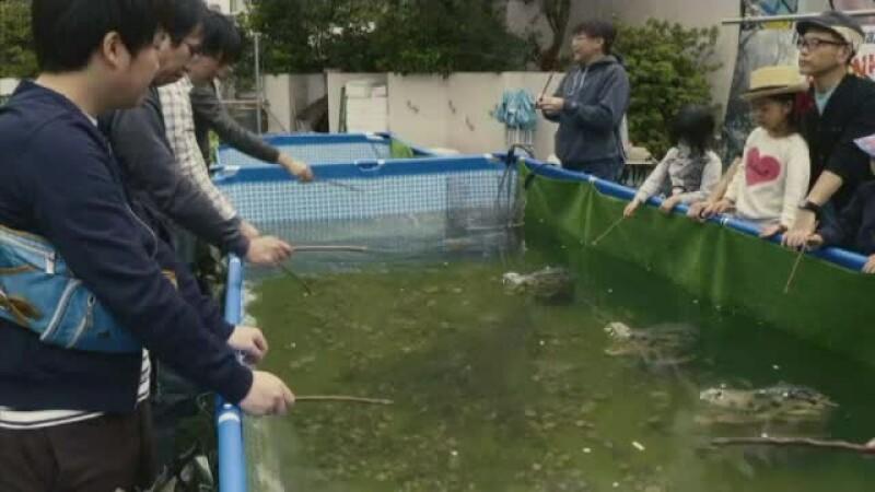 """""""Cea mai periculoasă partidă de pescuit"""" din Japonia. Evenimentul se bucură de mare succes"""