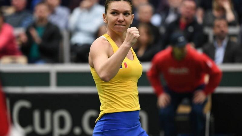 Fed Cup Franța - România
