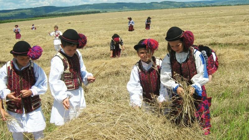 In Transylvania - STIRI