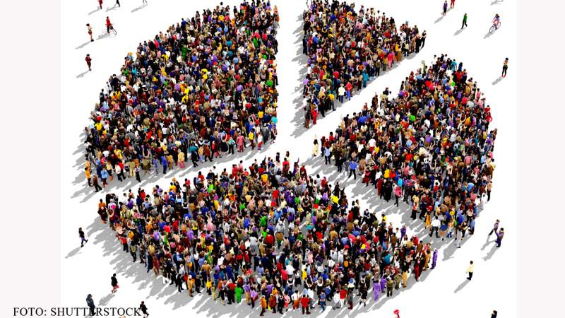 populatie pie chart oameni