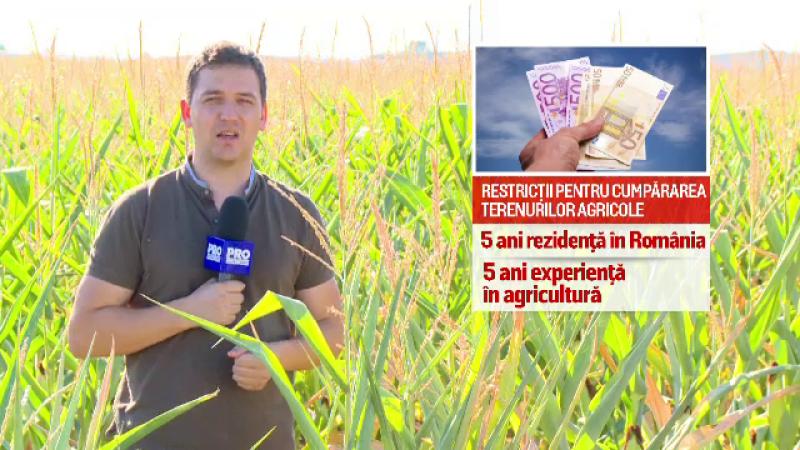Romania va pune restrictii la vanzarea terenurilor agricole. Legea aflata in pregatire la minister