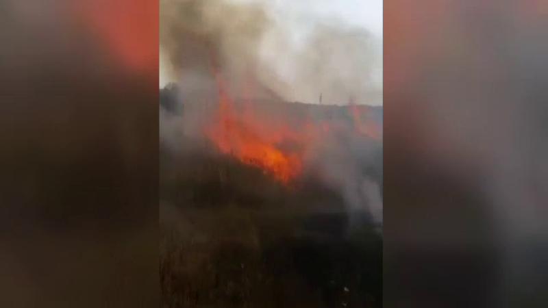 incendii vegetatie
