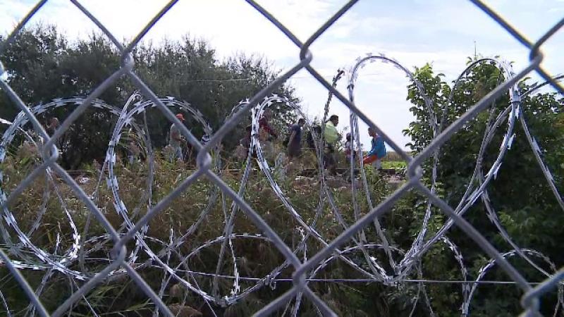 Focuri de arma la granita cu Serbia. 28 de migranti sirieni si irakieni, prinsi cand voiau sa treaca in Romania