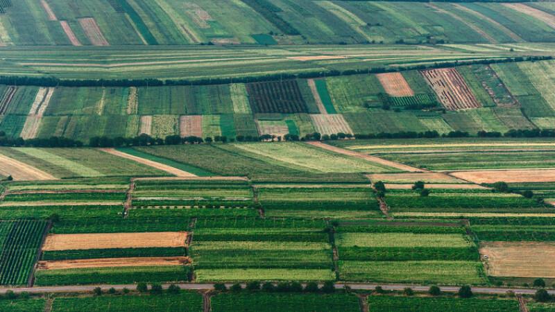 agricultura Romania