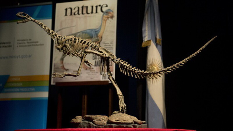 """Oamenii de știință au rezolvat misterul """"dinozaurului Frankestein"""""""