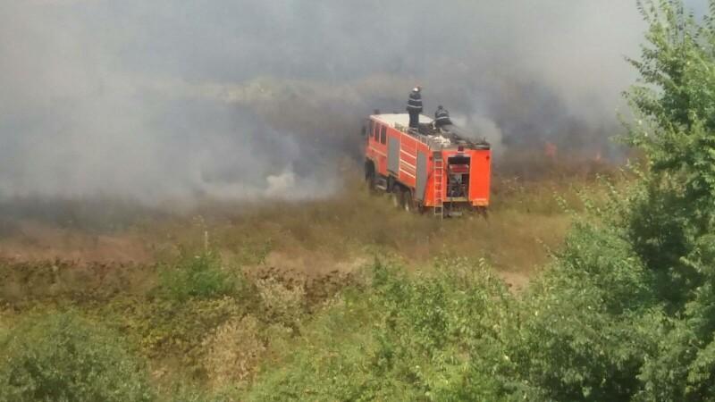 incendiu, Parcul Natural Văcăreşti, interventie