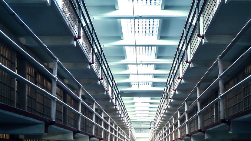 O femeie a fost condamnată la închisoare pe viață din cauza unui papagal
