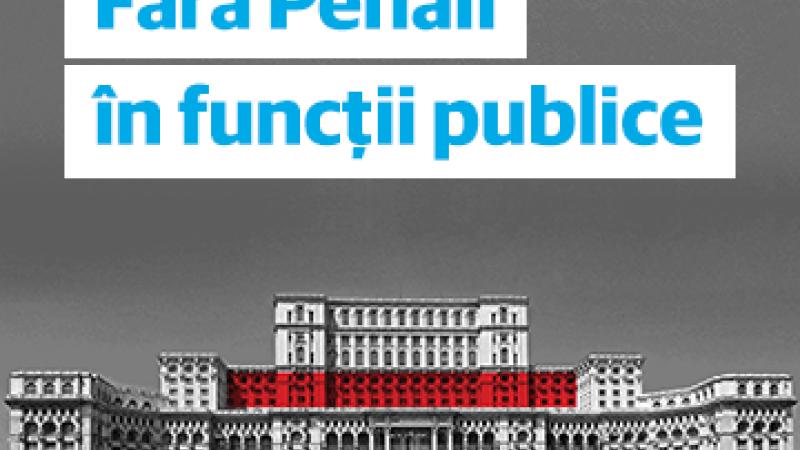 Fara penali in functii publice