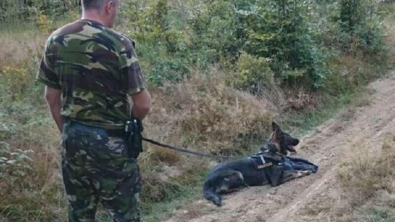Doi bărbaţi au sărit în Tisa şi au înotat până în Ucraina când au văzut poliţia. De ce se temeau