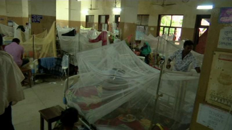 Epidemie fără precedent de febră Dengue în Bangladesh