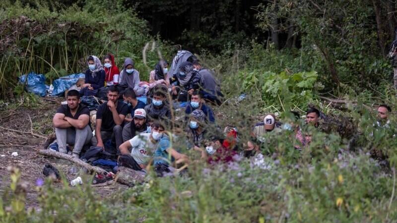 migranti granita Polonia Belarus
