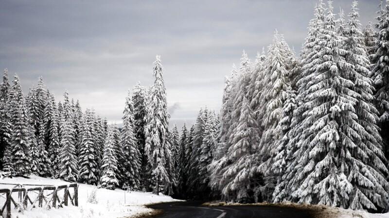 Iarna, ninge, zapada, drum
