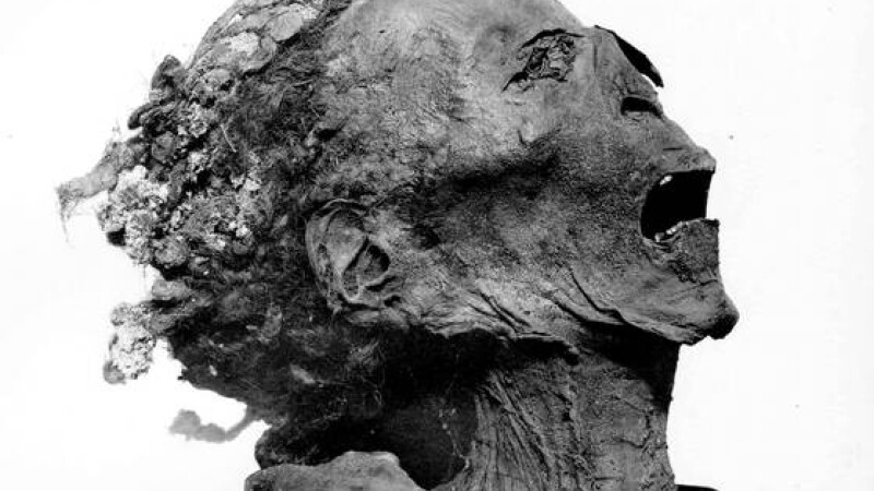 mumia printului Pentawer