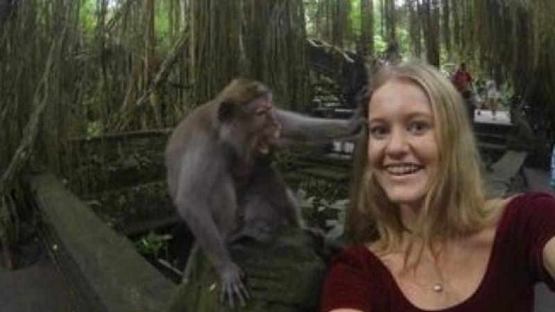 A vrut sa-si faca un selfie exotic, dar a iesit un dezastru de proportii. Ce s-a intamplat la cateva secunde de la prima poza