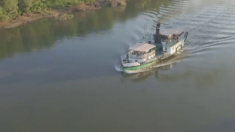 nava Borcea