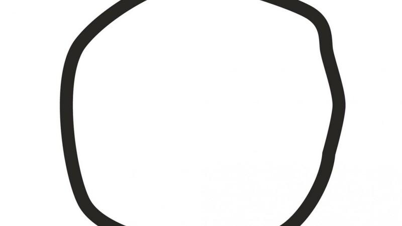 testul cu cercul