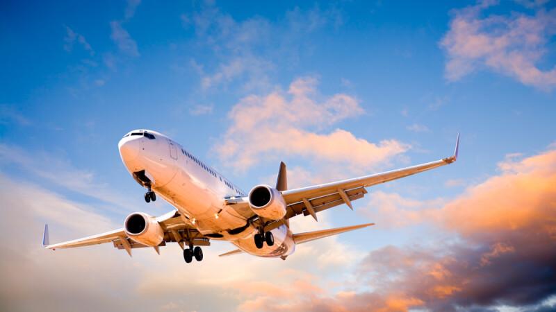 Un pasager dintr-un avion ce zbura din Mumbai spre Londra a vazut un sobolan la bord. Ce s-a intamplat dupa cateva minute