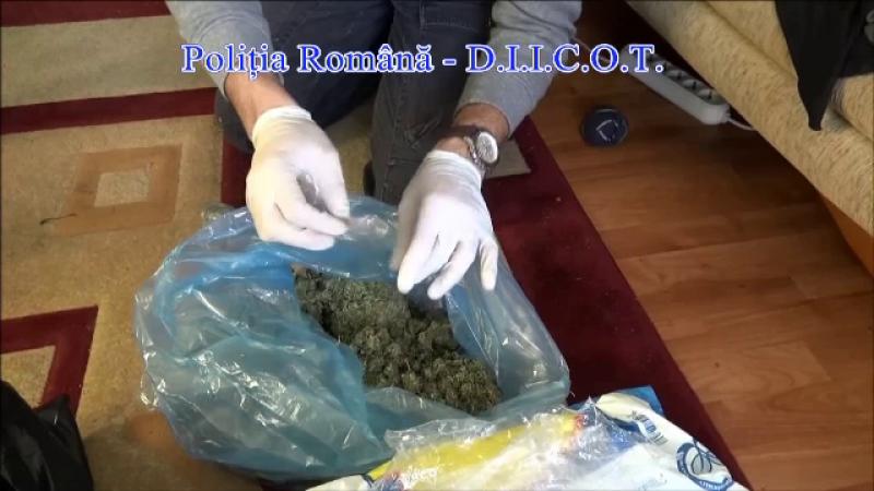 Cinci kilograme de cannabis si 19 grame de cocaina, confiscate de DIICOT la Brasov. Unde urmau sa ajunga drogurile
