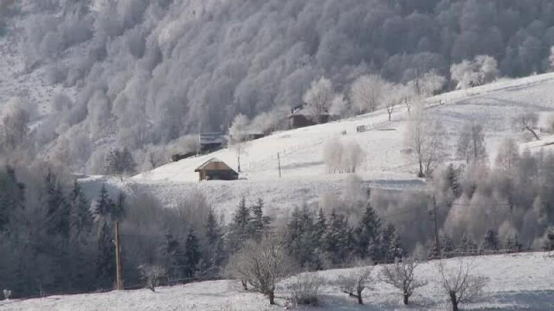 cabana munte