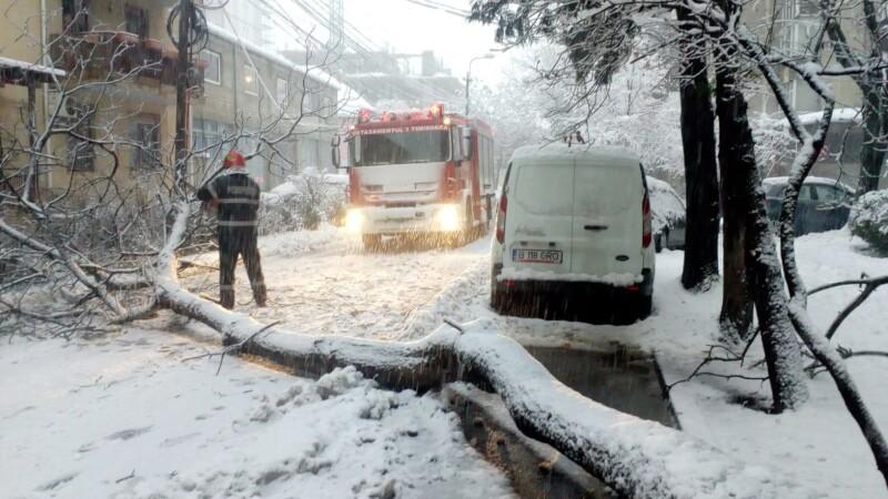 ninsoare, vreme rea, iarna, incidente