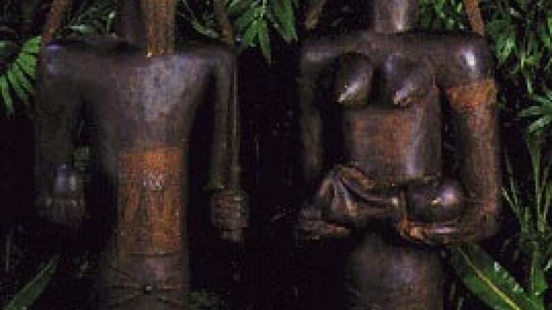 Statui ale fertilitatii
