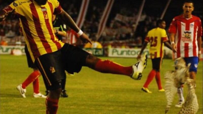 Video/Cruzime: Un fotbalist a sutat intr-o bufnita. Imagini socante