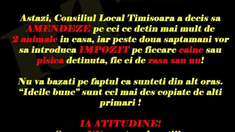 """Deciziile Consiliului Local, contestate de timisoreni. """"Taxa pentru caini incurajeaza abandonul lor"""""""