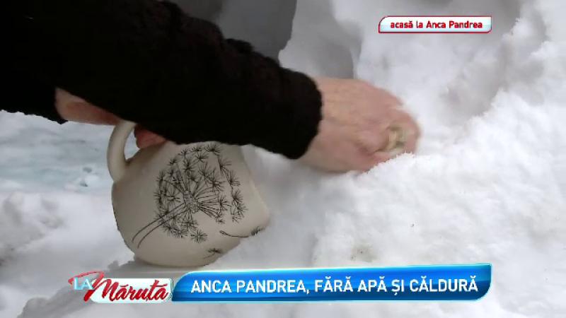 Anca Pandrea