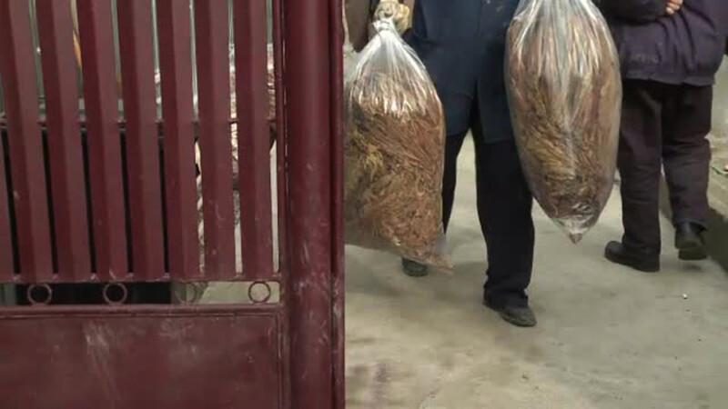 perchezitii la producatorii ilegali de tigari
