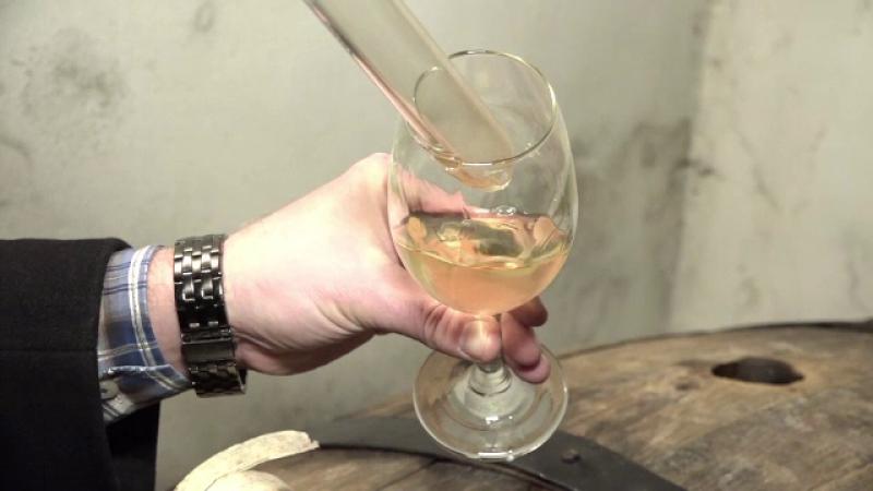 podgorie, vita de vie, investitie, vinuri romanesti, calitate