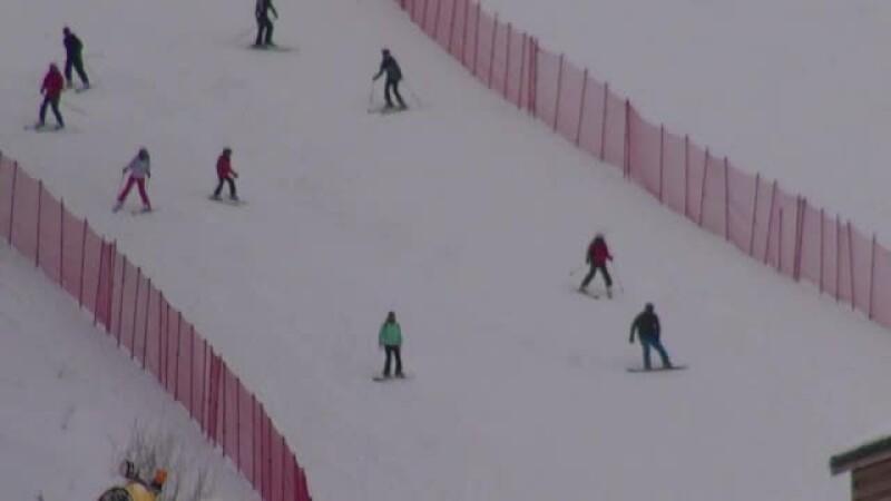 partii schi