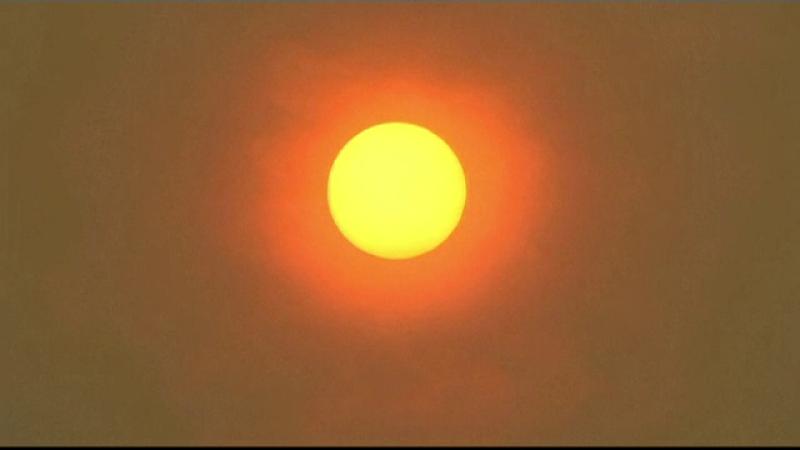 Record de temperaturi în Australia: 49 de grade Celsius. Efectele negative