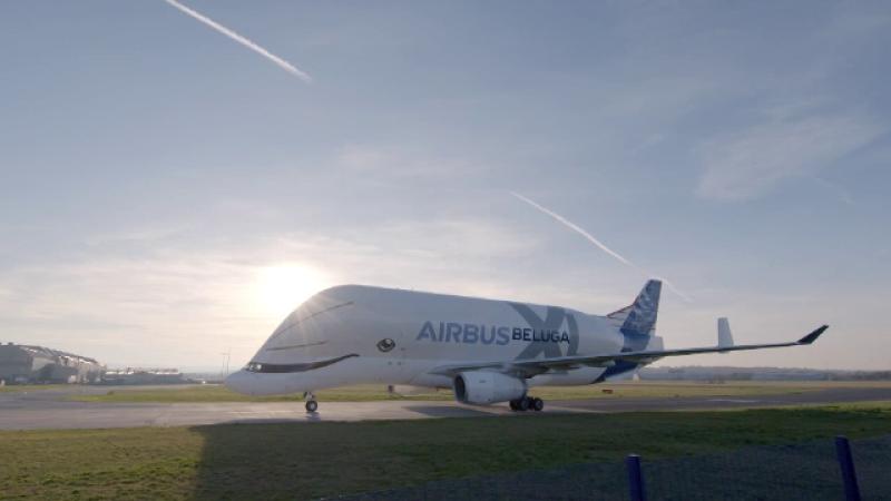 avion beluga