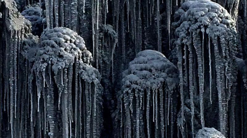 zăpadă neagră Rusia - 3