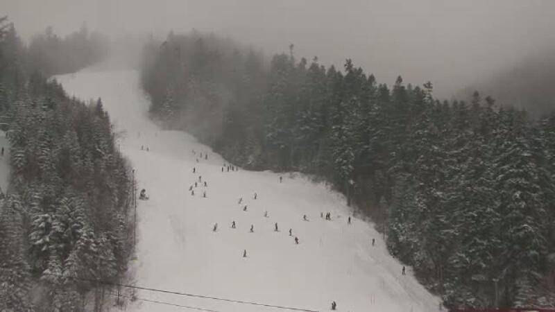 partie schi