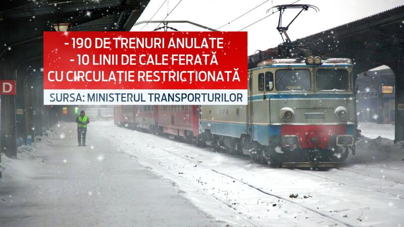 carton trenuri anulate